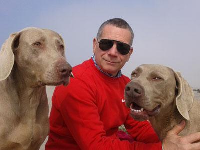 Allevamento cuccioli di Bracco di Weimaraner